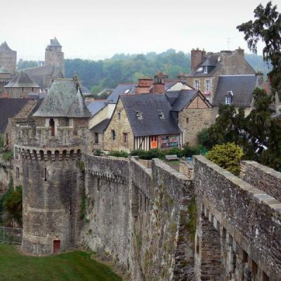 Fougeres 10815 w800